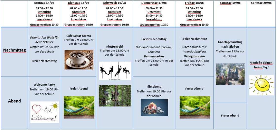 actividades frankfurt